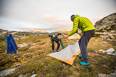 Two backpackers set up tent in alpine meadow. - p1166m2162491 by Cavan Images