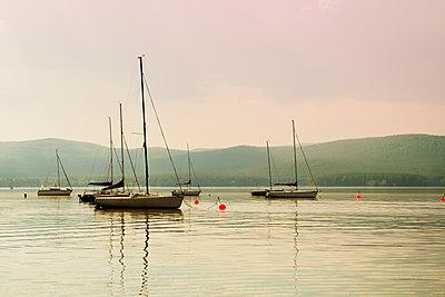 Boats floating in harbor - p555m1411602 by Aleksander Rubtsov