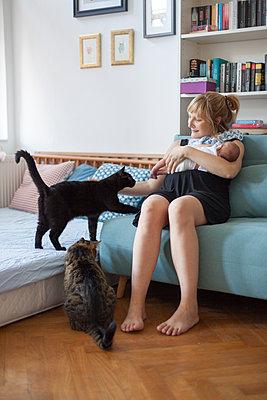 Mutter mit Baby und zwei Katzen - p795m2027606 von Janklein
