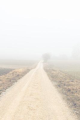 Feldweg im Nebel - p354m1467152 von Andreas Süss