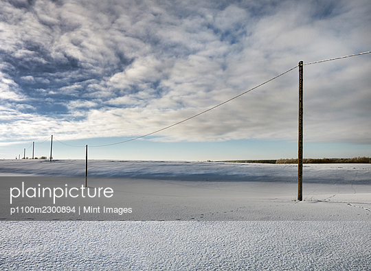 Row of wooden electricity wiring poles in an open winter landscape - p1100m2300894 by Mint Images
