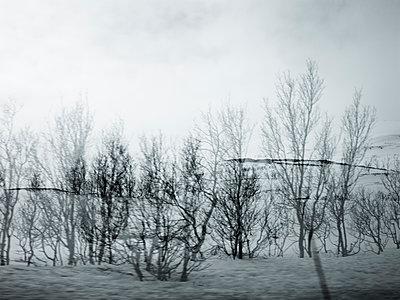 Snowy landscape - p945m1488178 by aurelia frey