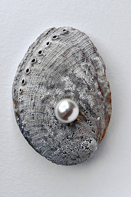 Pearl in a oyster - p1210m2254565 by Ono Ludwig