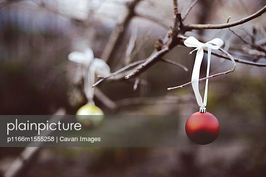 p1166m1555258 von Cavan Images