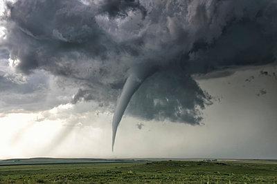 p429m935313 von Jason Persoff Stormdoctor