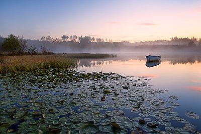 Loch Rusky, Perthshire, Scotland, United Kingdom, Europe - p871m1174306 by Karen McDonald