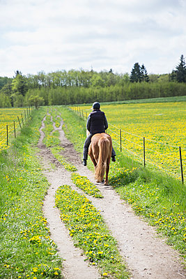 Sweden, Skane, Rear view of woman riding horse - p352m1126409f by Ester Sorri