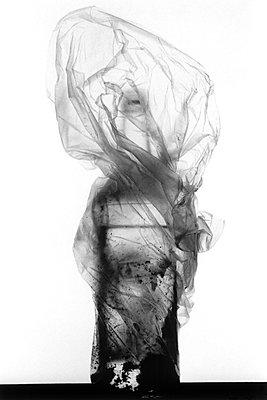 Bottle in plastic bag - p1034m901644 by Didier Gaillard