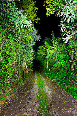 Country lane at night - p248m853937 by BY