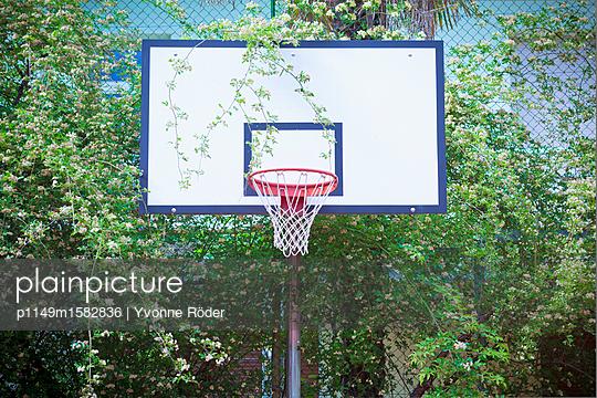 Basketballkorb - p1149m1582836 von Yvonne Röder