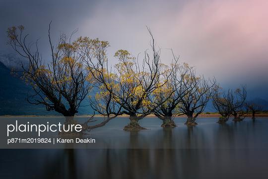 p871m2019824 von Karen Deakin