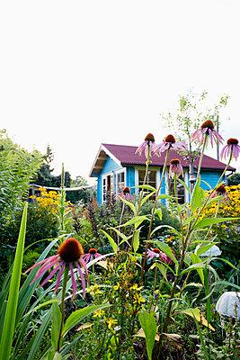Garten-Idylle - p464m1189733 von Elektrons 08