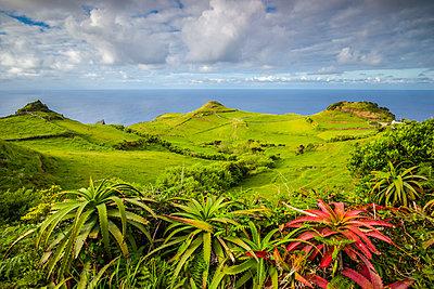 Portugal, Azores, Santa Maria Island, Lagoinhas, landscape - p651m2006645 by Walter Bibikow