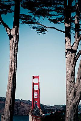 Golden Gate Bridge - p795m912240 by Janklein