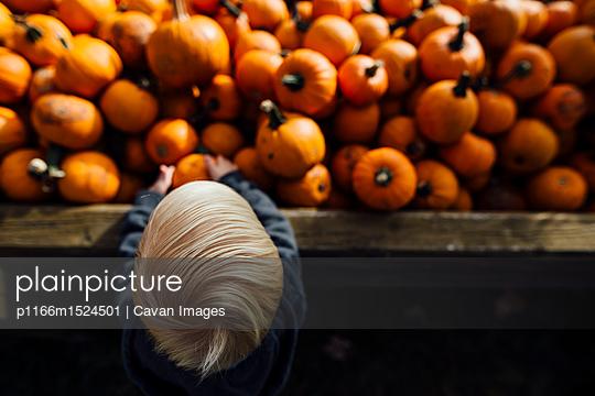 p1166m1524501 von Cavan Images