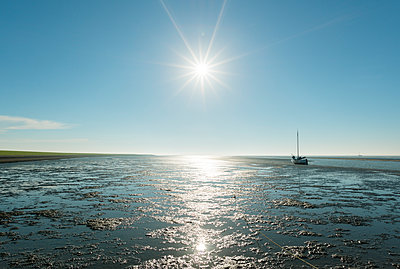 Waddensea summer - p1132m1168551 by Mischa Keijser