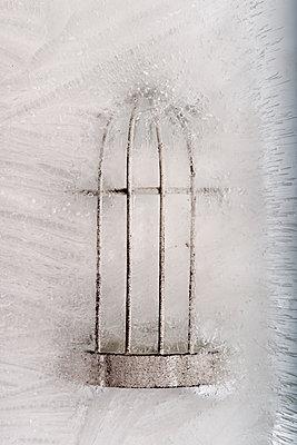 Eingefrorenes Vogelkäfig - p451m1511420 von Anja Weber-Decker