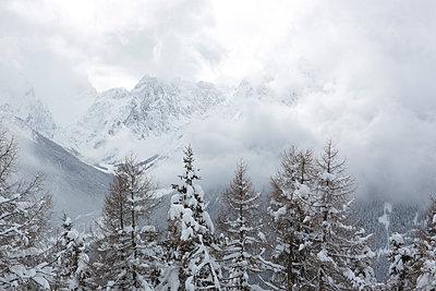 Winter - p441m956142 by Maria Dorner