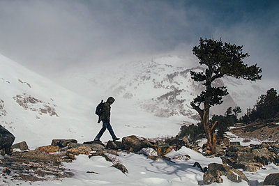 Man Hiking at Treeline - p1262m1115689 by Maryanne Gobble