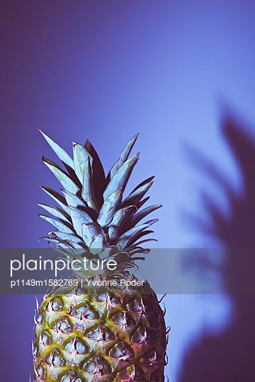 Ananas - p1149m1582769 von Yvonne Röder