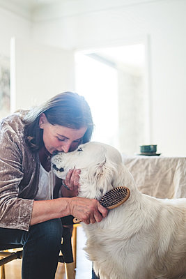 Loving senior woman combing cute dog while sitting at home - p426m2046376 by Maskot