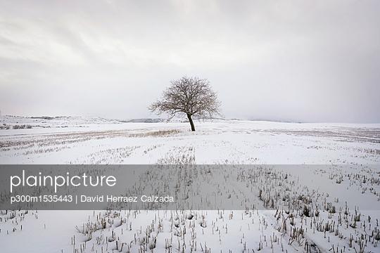 p300m1535443 von David Herraez Calzada