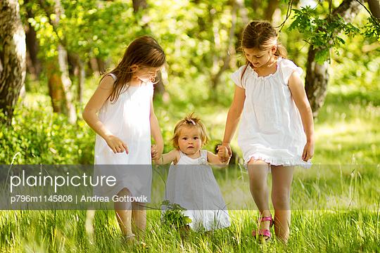 Feen - p796m1145808 von Andrea Gottowik