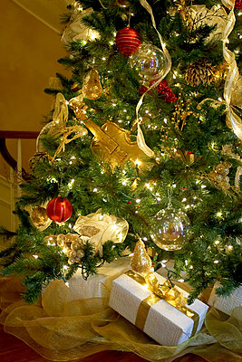 Presents Under A Christmas Tree, Canada, Ontario - p442m837430f by Banko Photographic Ltd.