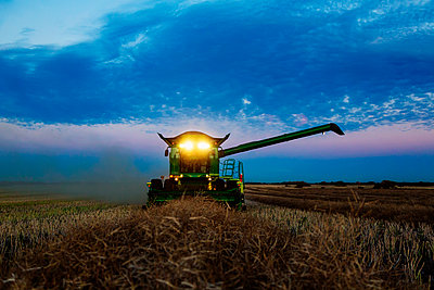 A fully loaded combine with its lights on arm out for transer, harvesting canola after sunset; Legal, Alberta, Canada - p442m2111497 by LJM Photo