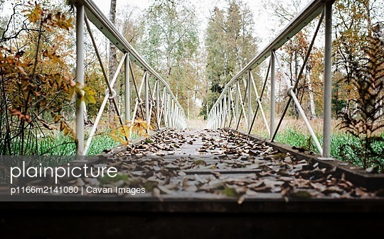 an empty bridge leading to a forest covered in leaves in fall - p1166m2141080 by Cavan Images