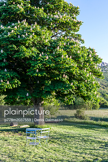 Provence - p778m2037559 von Denis Dalmasso