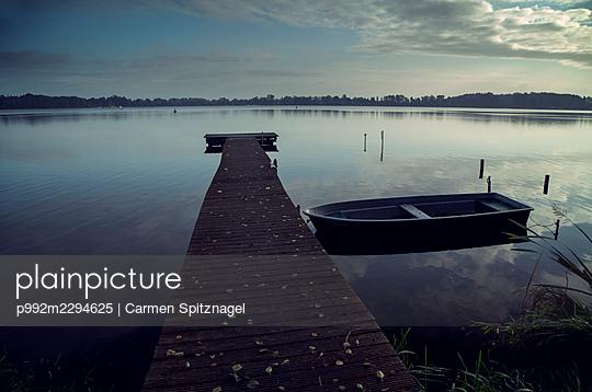 p992m2294625 by Carmen Spitznagel
