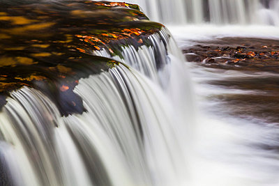 Horseshoe Falls, near Pontneddfechan, Brecon Beacons National Park, Powys, Wales, United Kingdom, Europe - p871m998832f by Billy Stock