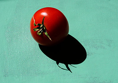Tomato - p1190m2013559 by Sarah Eick