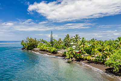 Polynesia, Tahiti south peninsula with palm trees - p1487m2245026 by Ludovic Mornand