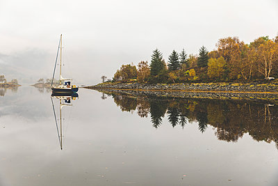UK, Scotland, sail boat and tree reflections on a lake in the highlands - p300m2013252 by William Perugini