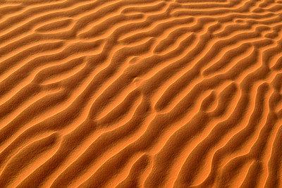 United Arab Emirates, Rub' al Khali, desert sand and ripple marks - p300m2103246 von Egmont Strigl