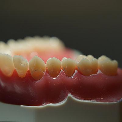 False teeth - p1578m2297161 by Marcus Hammerschmitt