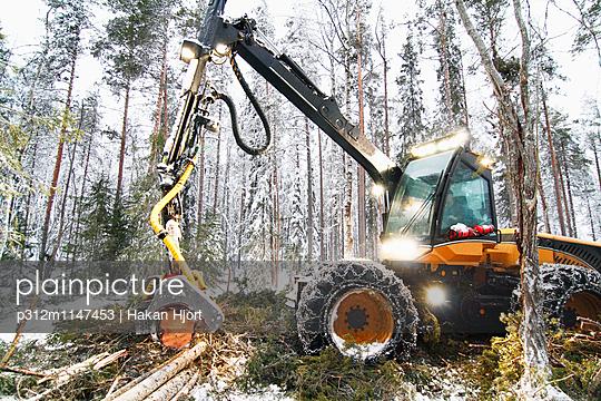 p312m1147453 von Hakan Hjort