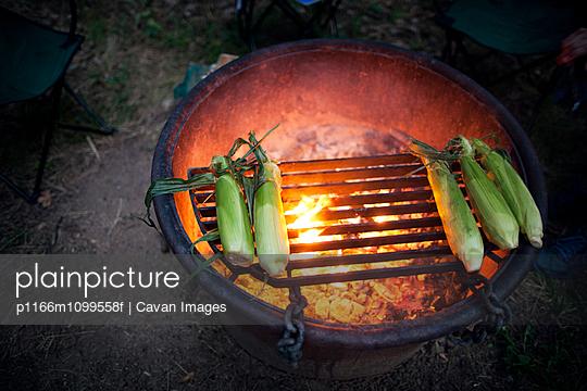 p1166m1099558f von Cavan Images