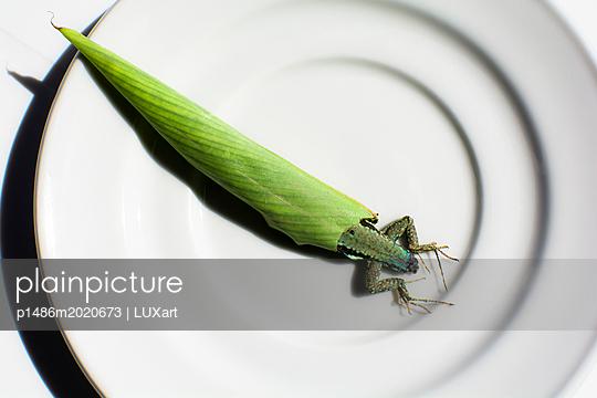 Eidechse - p1486m2020673 von LUXart