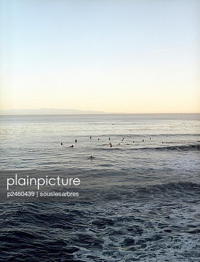 Surfer - p2460439 by souslesarbres
