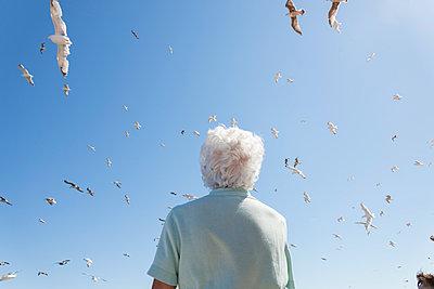 white hair and seagulls - p1201m1051235 by Paul Abbitt