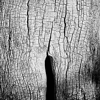 p1661m2245374 by Emmanuel Pineau