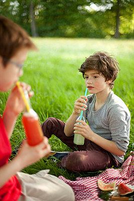 Kinder beim Picknick im Park - p1195m1138154 von Kathrin Brunnhofer