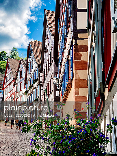 Half-timbered houses in Schiltach in the Black Forest - p382m2283252 by Anna Matzen