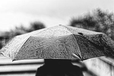 Regen - p1340m2038010 von Christoph Lodewick