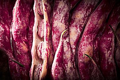 Borlotti beans - p851m1528943 by Lohfink