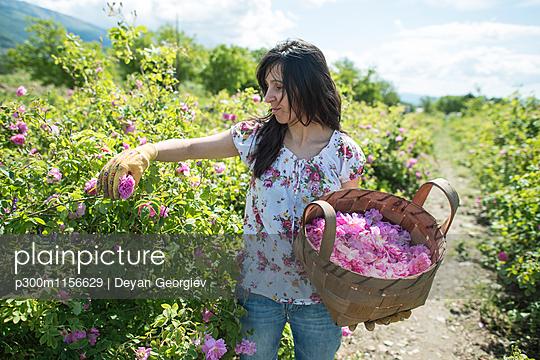 p300m1156629 von Deyan Georgiev