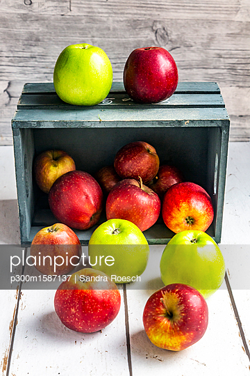Various sorts of apples - p300m1587137 von Sandra Roesch